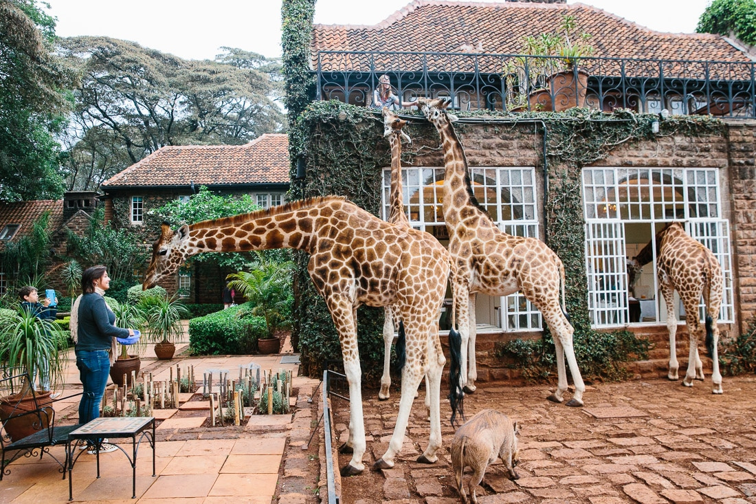 giraffe-manor-nairobi-kenya-travel-hotel-photography-26-1